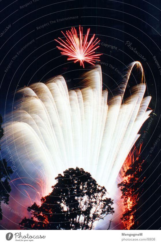 Feuerwerk2 Baum rot hell Funken Fototechnik