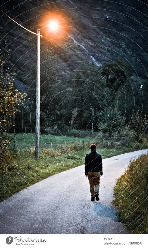 heimweg Frau Einsamkeit dunkel kalt Straße Lampe gehen Sträucher einzeln Spaziergang Straßenbeleuchtung gruselig Kurve Fußgänger heimwärts Nachtleben