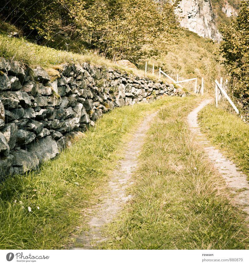 feldweg Natur Landschaft Park Wiese Feld Fußgänger Wege & Pfade ruhig Erholung Fußweg Steinmauer Landleben Farbfoto Außenaufnahme Menschenleer