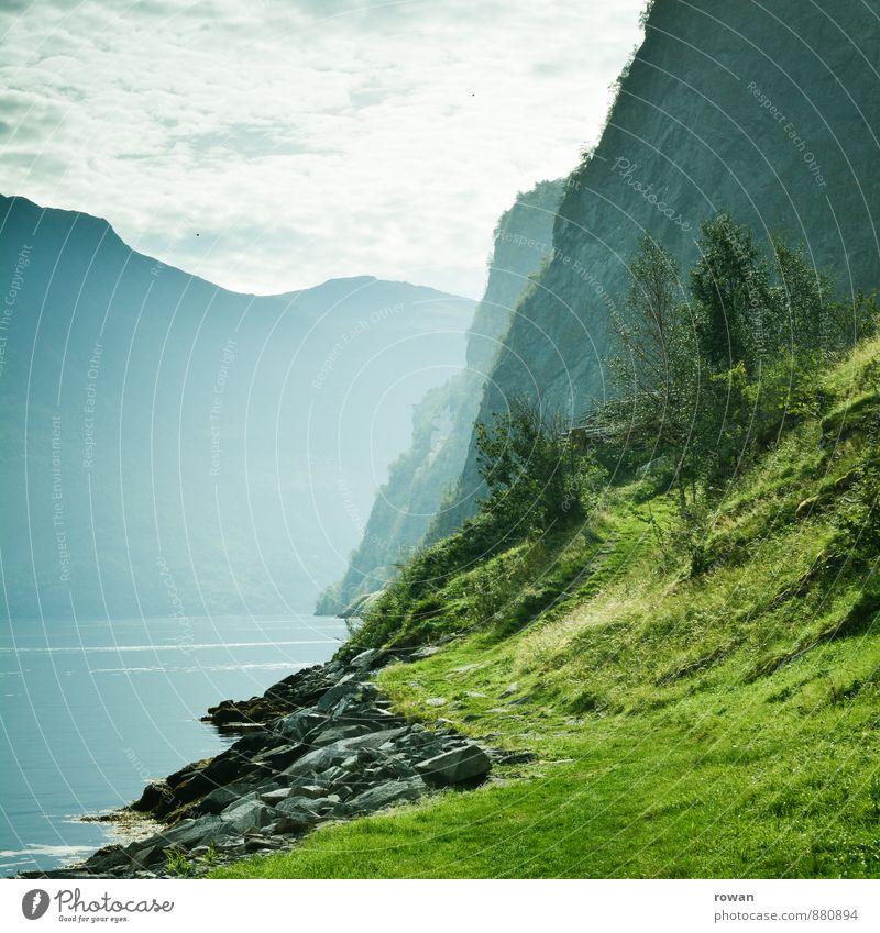 fjord Natur schön grün Meer Erholung Landschaft ruhig Wald Berge u. Gebirge Küste Idylle Schönes Wetter Bucht dramatisch Norwegen Fjord