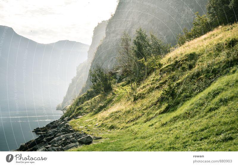 fjord Schönes Wetter Sträucher Felsen Berge u. Gebirge Küste Seeufer Bucht Fjord grün Norwegen Norwegenurlaub Erholung Natur Dunst wandern Wiese Farbfoto