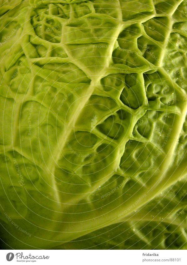knackkohl Gemüse Ernährung Vegetarische Ernährung Natur Linie eckig nah Wirsing Kohl Kohlgewächse verzweigt Vernetzung knackig pflanzlich Strukturen & Formen