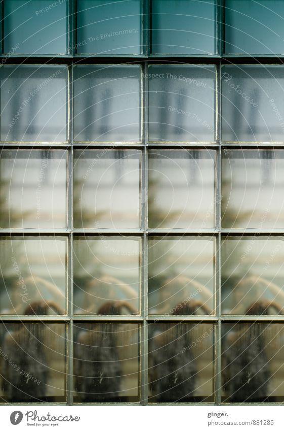 Köln UT | Mülheim Carlswerk | Mülheimer Paralleluniversum Mensch feminin Frau Erwachsene Leben Körper Kopf 1 4 blau Montage Fenster Doppelgänger überkopf