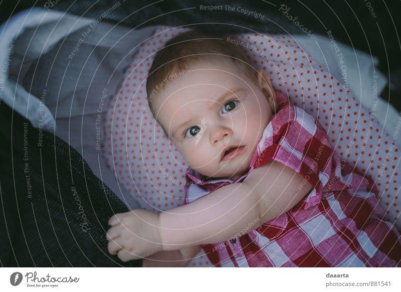 Baby süß Freude Freizeit & Hobby Veranstaltung Kind Junge Hemd Kinderwagen beobachten hören authentisch außergewöhnlich einfach elegant Erfolg Fröhlichkeit