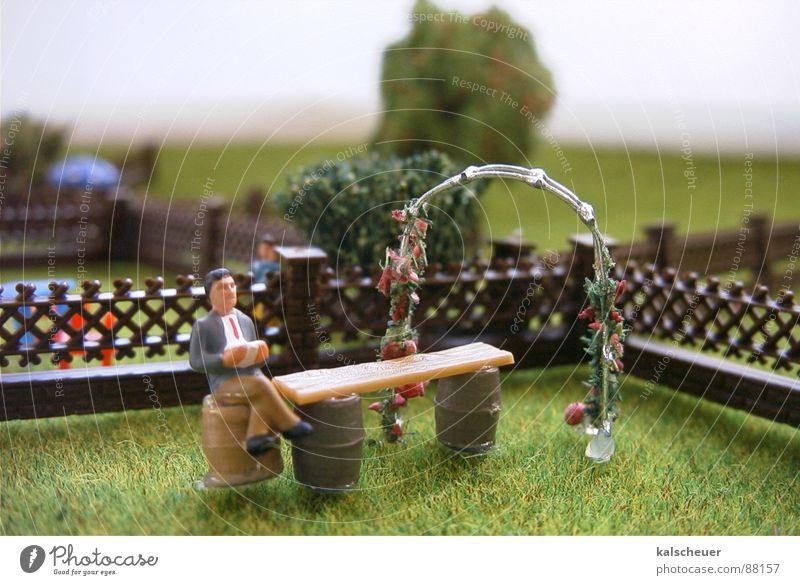 Schrebergarten1 ruhig Einsamkeit Gras Garten maskulin lesen Rasen Freizeit & Hobby Zaun gestellt Gartenzaun
