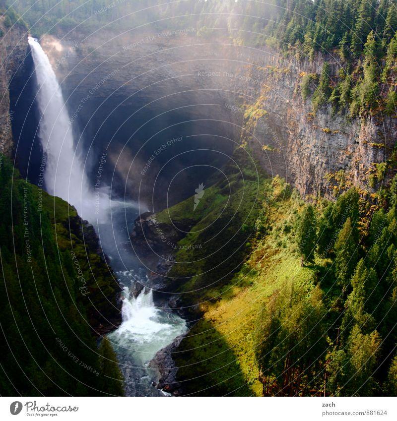 alles muss raus Tourismus Ferne Landschaft Wasser Wassertropfen Sonnenlicht Sommer Nebel Pflanze Baum Moos Wald Hügel Felsen Schlucht Wellen Flussufer Bach