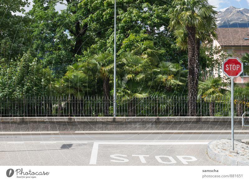 STOP Ferien & Urlaub & Reisen grün Sommer Straße Wege & Pfade Schilder & Markierungen Verkehr Schriftzeichen Ausflug Hinweisschild Fahrradfahren Abenteuer