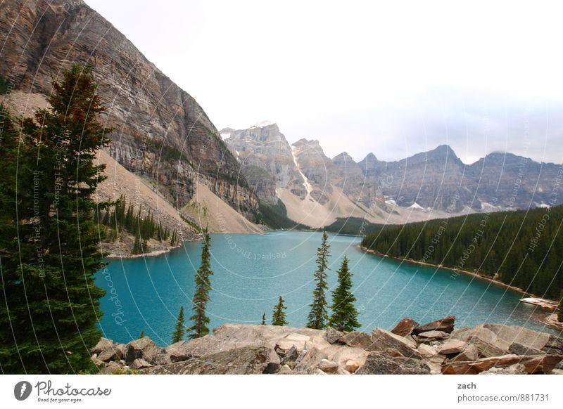 Moraine Lake Himmel Natur blau Pflanze Wasser Sommer Baum Landschaft Wolken Ferne Wald Berge u. Gebirge Herbst See Felsen Gipfel
