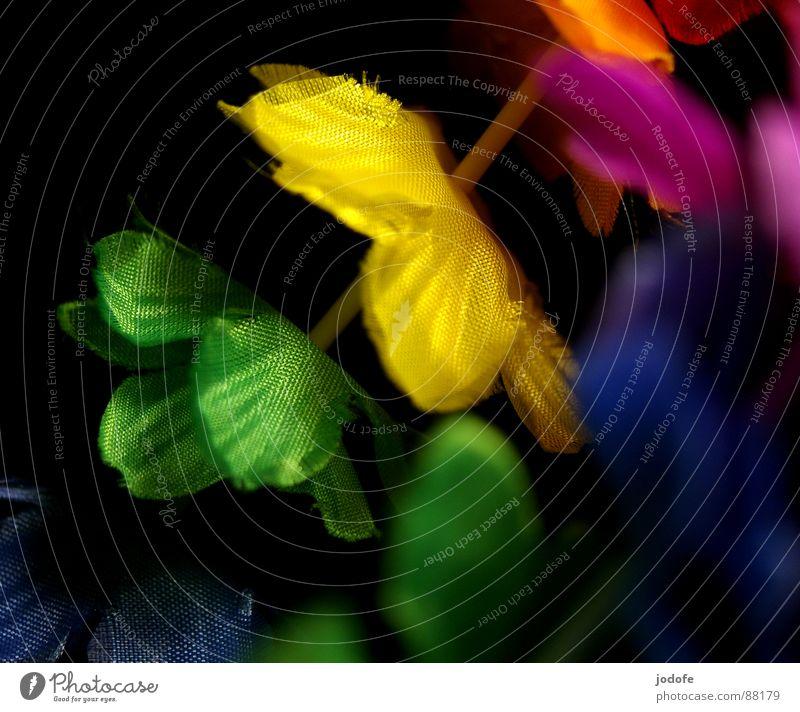 ...into the light hintereinander Hawaiiblume falsch Blütenkette Stoff Faser aufgereiht Girlande verschönern Schmuck mehrfarbig schwarz gelb Sommer Süden