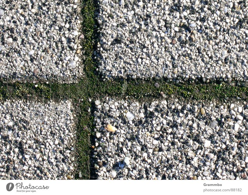 Terrassien - offizielle Landesflagge grün Ferien & Urlaub & Reisen Stein Rücken Terrasse Mineralien