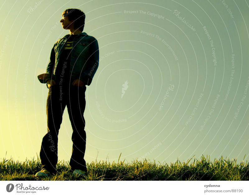 Standing there erleuchten Wiese Gras grün Stil Sonnenuntergang Körperhaltung Halm Sonnenbrille Sonnenlicht Denken Mann Kerl Froschperspektive Gefühle Mensch
