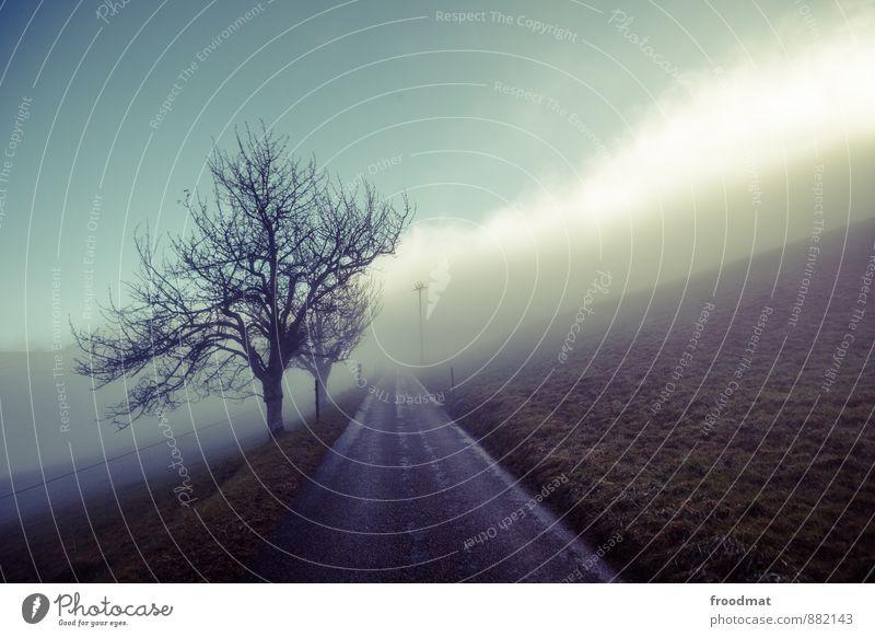 ungewiss Umwelt Natur Landschaft Herbst Winter Klima schlechtes Wetter Unwetter Nebel Eis Frost Wiese Hügel Stadtrand Menschenleer Straße Wege & Pfade gruselig