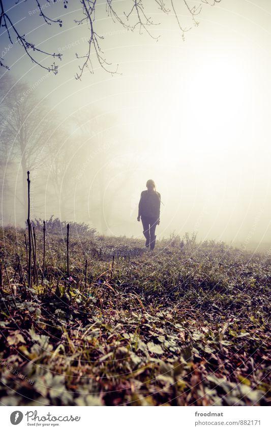 dunstgunst Mensch feminin Junge Frau Jugendliche Erwachsene 1 Natur Landschaft Herbst Winter Schönes Wetter Sturm Eis Frost Baum Wiese Feld Wald laufen wandern