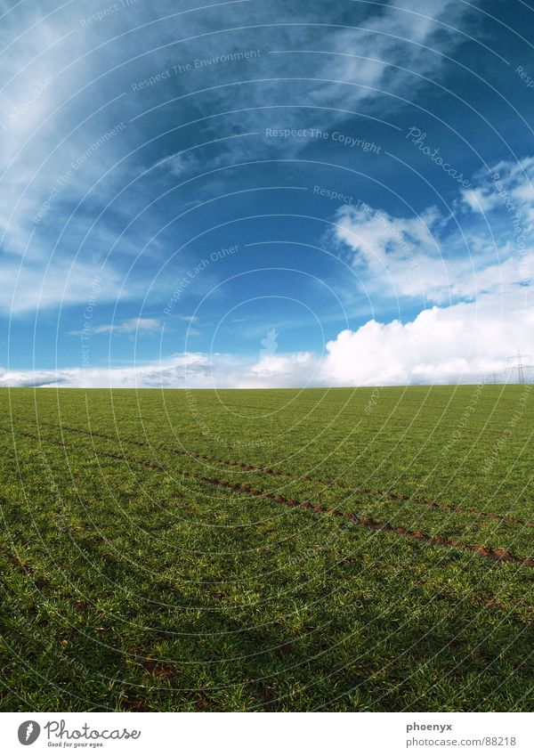 0815 ?! Himmel grün blau Wolken Erholung Wiese Gras Frühling Freiheit Landschaft Feld Fröhlichkeit Bodenbelag Spuren Bauernhof Gelassenheit