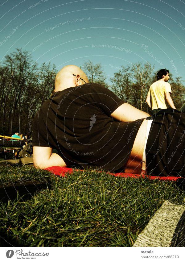 RÜCKSICHT Sonne Sommer Erholung Wiese Freiheit Gras Garten Luft Freundschaft Park Freizeit & Hobby Pause beobachten abgelegen Frühlingsgefühle ausschalten