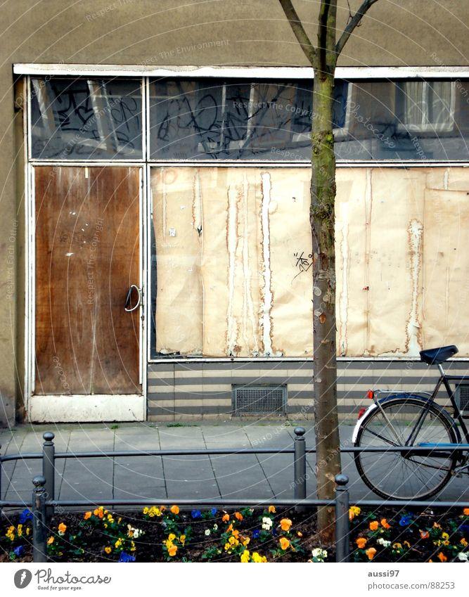 Die Bäckerei meines Vertrauens alt Blume Einsamkeit braun Fahrrad Zeit Ladengeschäft verfallen früher vergilbt