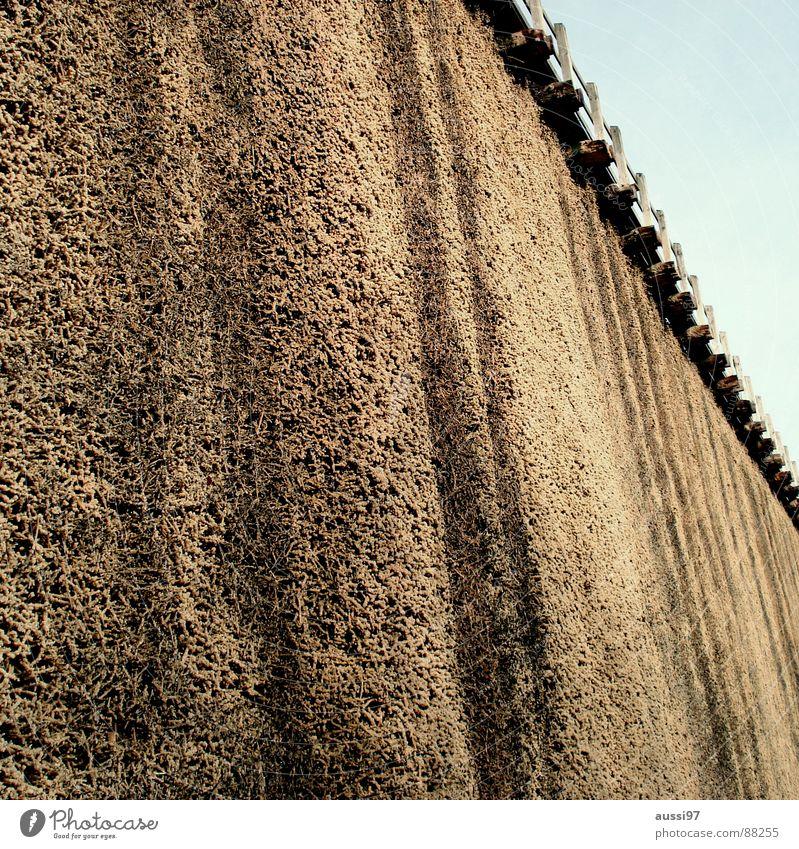 Frischluft Erholung Wand Luft braun Gesundheit Salz Kurort Badeort Saline
