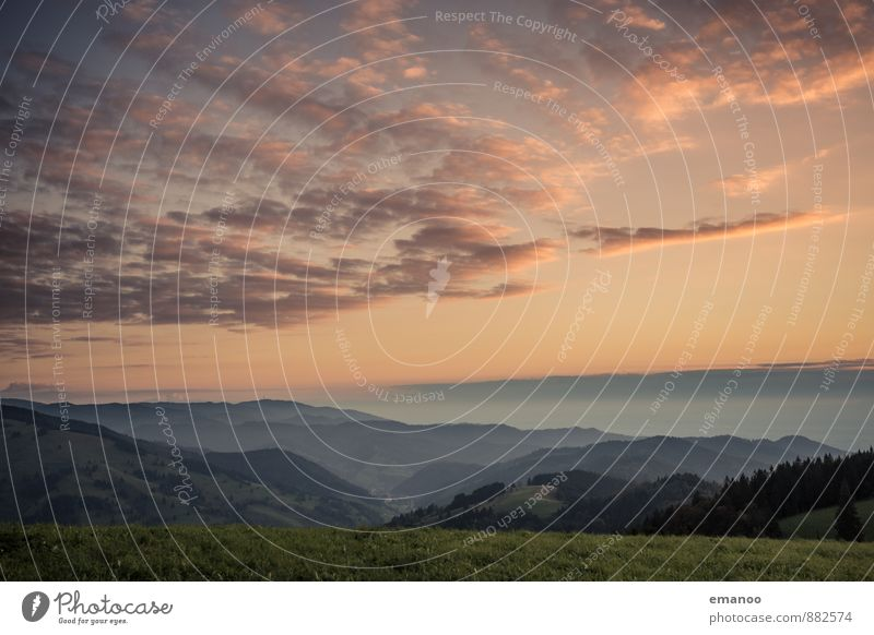 black forest Ferien & Urlaub & Reisen Ausflug Ferne Freiheit Sommer Berge u. Gebirge wandern Natur Landschaft Himmel Wolken Wetter Gras Wald Hügel hoch