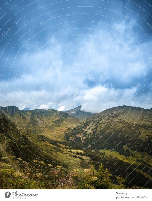 Die Wolken kommen... Himmel Natur Ferien & Urlaub & Reisen blau Pflanze grün Sommer Landschaft ruhig Ferne Berge u. Gebirge braun Wetter Idylle Tourismus
