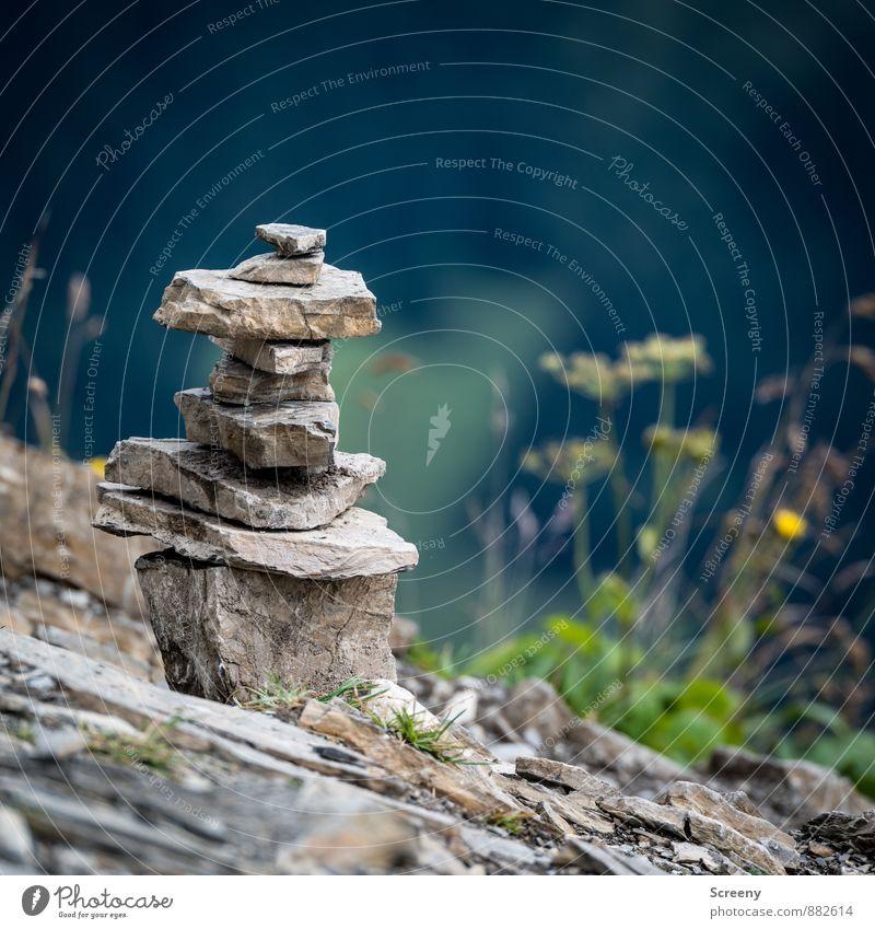 Türmchenbau Ferien & Urlaub & Reisen Tourismus Ausflug Berge u. Gebirge wandern Natur Landschaft Pflanze Erde Sommer Felsen Alpen Allgäuer Alpen Steinhaufen