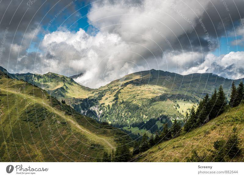 Rauf und runter / Im Tal Ferien & Urlaub & Reisen Tourismus Ausflug Abenteuer Ferne Freiheit Natur Landschaft Himmel Wolken Sommer Wetter Felsen Alpen