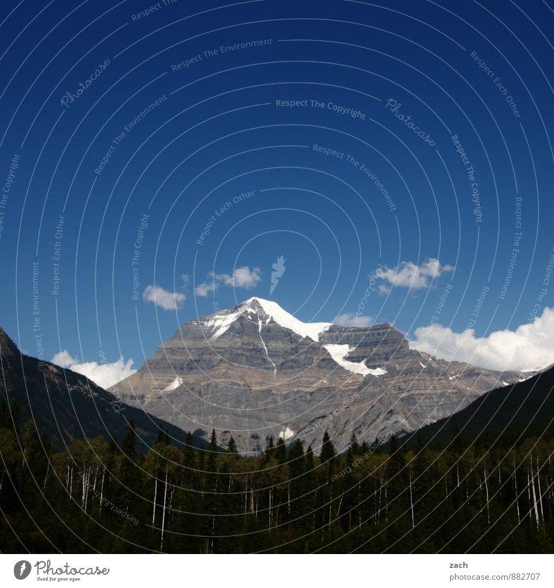 Tagesziel Ferien & Urlaub & Reisen Ausflug Ferne Klettern Bergsteigen wandern Landschaft Himmel Wolken Sommer Schönes Wetter Schnee Baum Nadelwald Wald Felsen