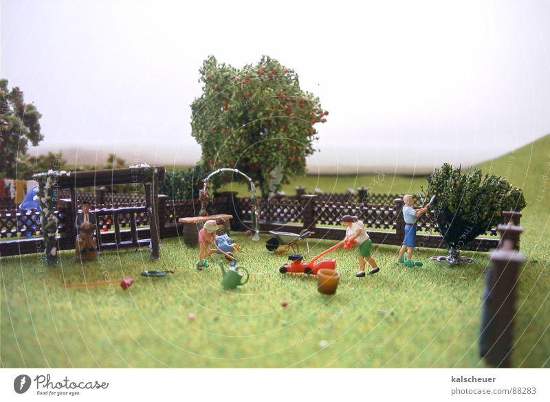 Gartenpflege grün Park Nebel Rasen Zaun gestellt Wochenende Rasenmäher