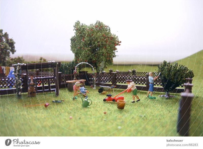 Gartenpflege grün Garten Park Nebel Rasen Zaun gestellt Wochenende Rasenmäher
