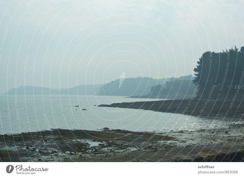 Geduld | die Sonne schafft den Nebel Natur Baum Meer Landschaft ruhig Strand Ferne Wald Traurigkeit Küste grau Wellen trist Schönes Wetter Trauer