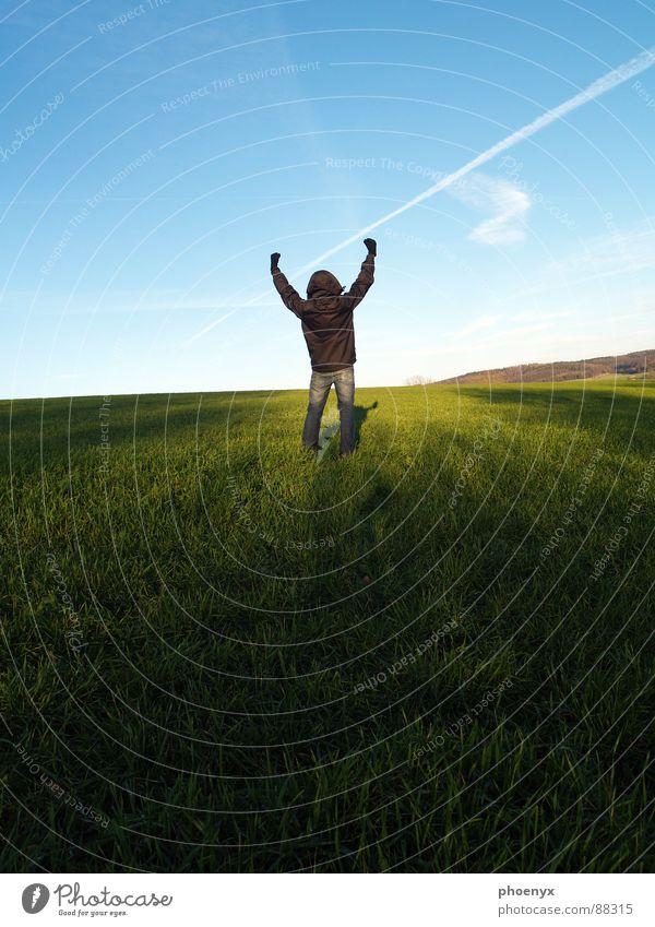 Victory Mensch Himmel blau grün weiß Hand Landschaft Freude Wolken dunkel Wiese Gras Freiheit hell Feld Zufriedenheit