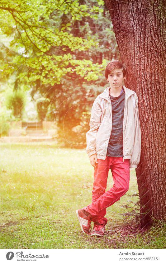 Porträt an Baum Lifestyle schön Erholung Mensch maskulin Jugendliche 1 13-18 Jahre Kind Natur Sonnenlicht Sommer Schönes Wetter Park stehen ästhetisch