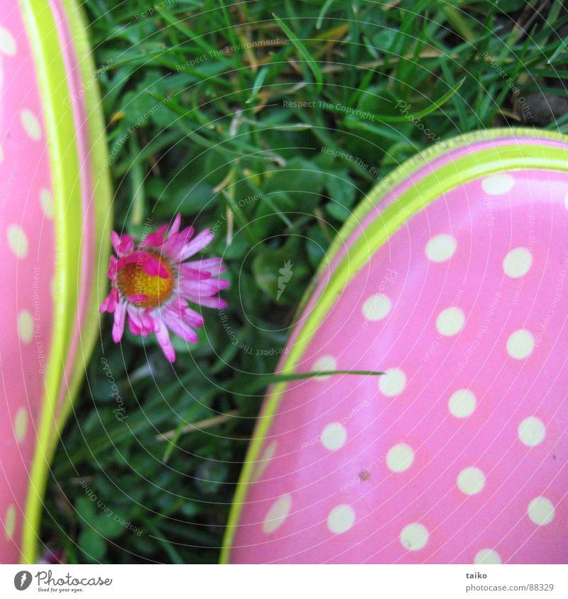 Rosa's Gumboots III Blume grün gelb springen Gras Frühling Schuhe rosa Bekleidung Rasen Stiefel Gänseblümchen Fleck saftig Gummistiefel getupft