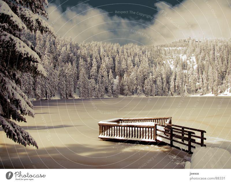 Rampe ins Glück Himmel Winter Ferien & Urlaub & Reisen ruhig Einsamkeit Wald kalt Schnee Berge u. Gebirge See Eis Ast Idylle Tanne gefroren Steg