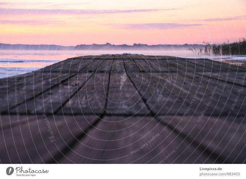 am Ruderhaus auf Rügen Himmel Natur Ferien & Urlaub & Reisen Pflanze Wasser Sommer Sonne Landschaft ruhig Wolken Umwelt gelb Holz rosa orange Nebel