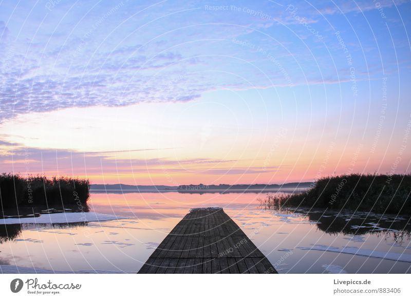am Ruderhaus auf Rügen Winter Winterurlaub Natur Landschaft Wasser Himmel Sonnenaufgang Sonnenuntergang Schönes Wetter Eis Frost Küste blau gold violett orange