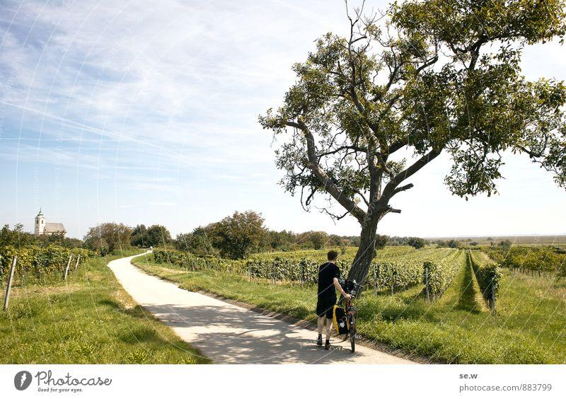 So schön ist der Sommer! Mensch Himmel Ferien & Urlaub & Reisen Jugendliche Baum Sonne Junger Mann Landschaft Ferne Umwelt Wiese Wege & Pfade Freiheit Feld