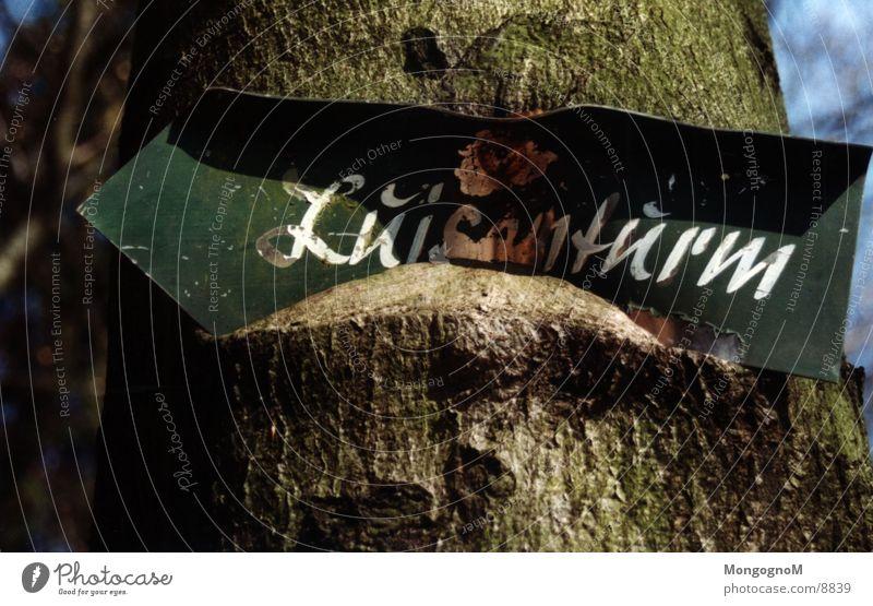 Verwachsen Baum Schilder & Markierungen Dinge