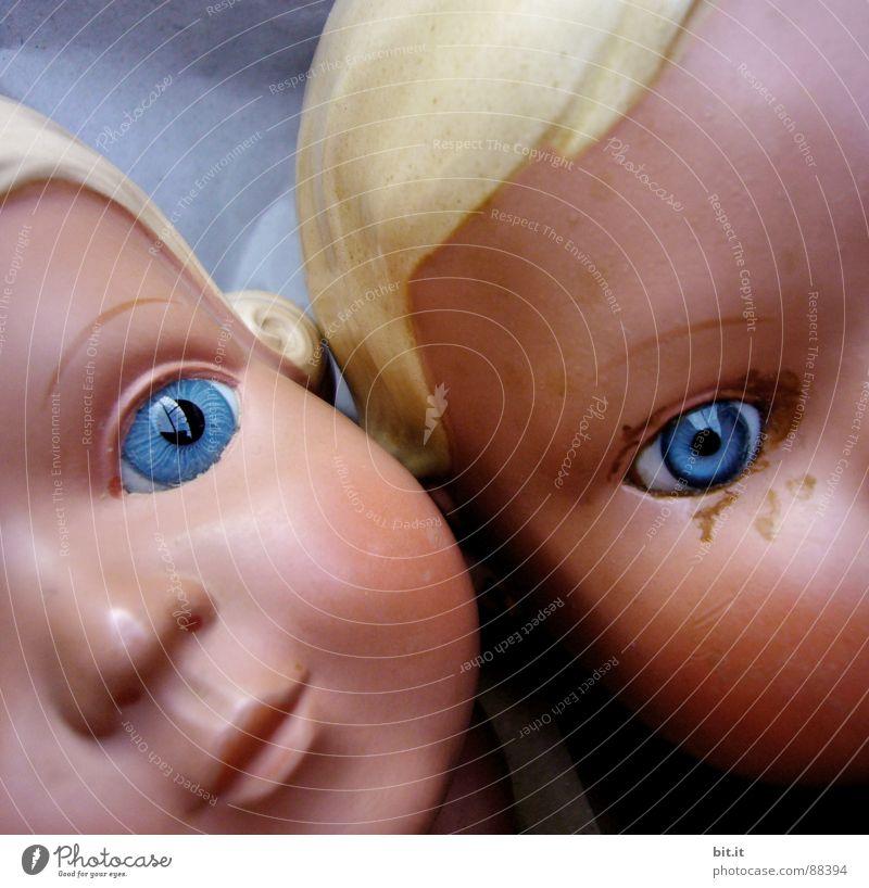 bit.ti hängt an dot.ti alt schön Gesicht Auge Spielen Junge Kopf Denken Horizont Kindheit Mund Nase Perspektive Dekoration & Verzierung Spitze Kunststoff