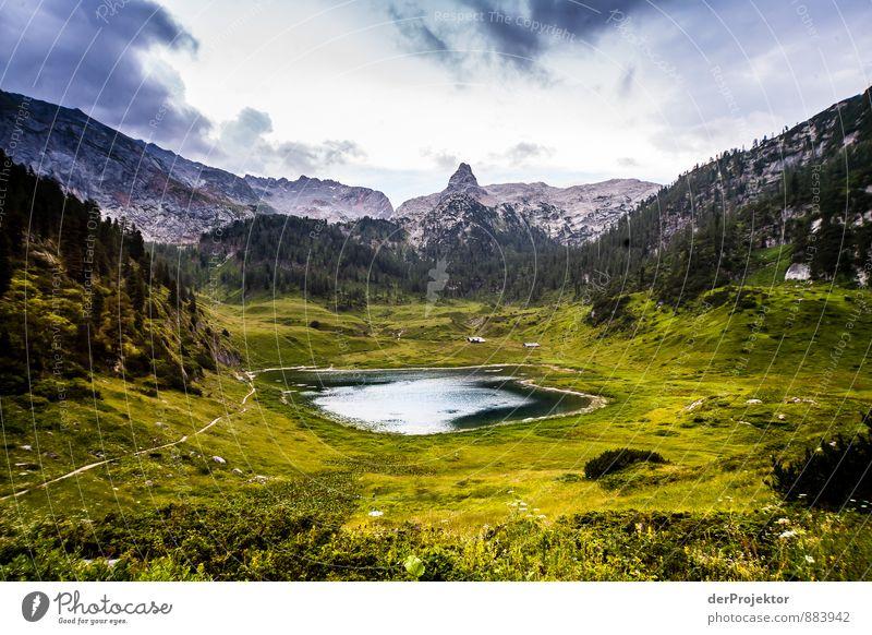 Der Funtensee ist ein Karstsee Ferien & Urlaub & Reisen Abenteuer Ferne Freiheit wandern Umwelt Natur Landschaft Pflanze Urelemente Sommer schlechtes Wetter