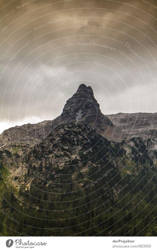 Der große Graue Natur Ferien & Urlaub & Reisen Pflanze Sommer Landschaft Wolken Ferne Wald Umwelt Berge u. Gebirge grau Freiheit Felsen Tourismus wandern Klima