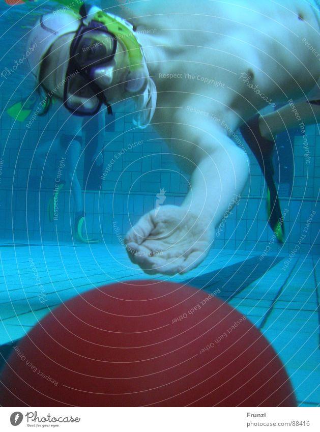 Frosch holt Kugel Taucher Schwimmbad nass Sport Spielen Unterwasserrugby Wasser blau Ball