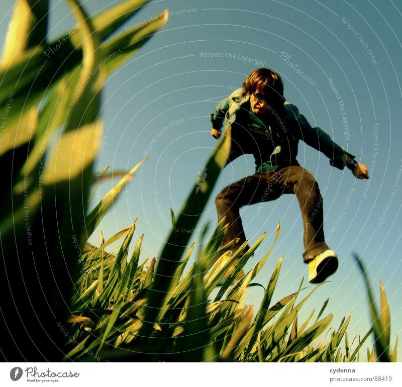 Spring ins Feld! hüpfen Frühling Wiese Gras grün Stil Sonnenuntergang Körperhaltung Halm Froschperspektive Sonnenstrahlen Kick Kampfsport Mann Kerl Gefühle