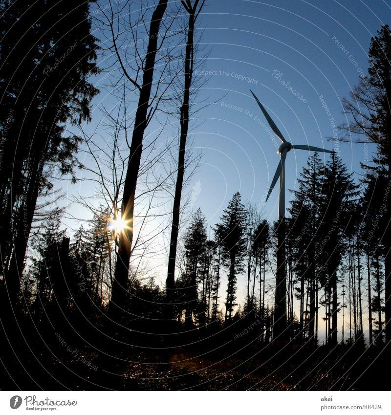 Windkraft am Roßkopf Himmel Wald Linie Perspektive Industrie Energiewirtschaft Elektrizität Windkraftanlage Geometrie Paradies Waldlichtung Standort himmelblau Laubbaum Nadelbaum Nadelwald