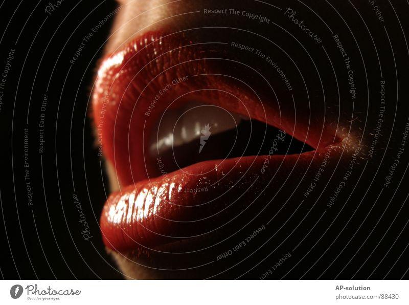 rote Lippen Lippenstift Makroaufnahme glänzend schimmern Küssen Schmatz Durchblutung Gefühle Frau feminin Mundwinkel verführerisch lasziv Kinn Glamour Schminke