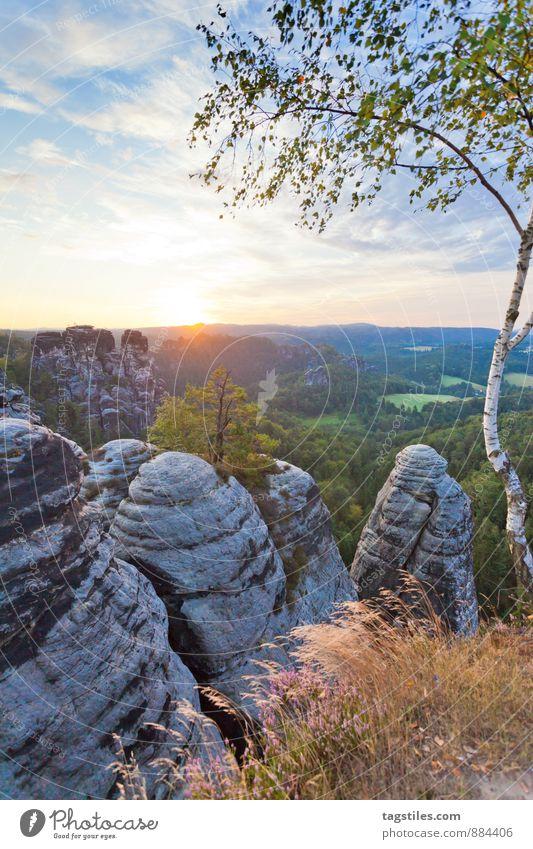 GUTEN MORGEN! Natur Ferien & Urlaub & Reisen Baum Erholung Wald Berge u. Gebirge Reisefotografie Architektur Felsen Deutschland Idylle Tourismus Aussicht