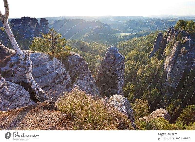 EARLY MORNING Bastei Elbsandsteingebirge Sonnenaufgang Brücke Felsen Berge u. Gebirge Dresden Rathen Sachsen Aussicht Attraktion Tourismus Sehenswürdigkeit