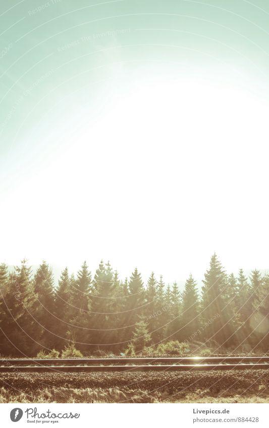 Bahngleise Umwelt Natur Landschaft Himmel Wolkenloser Himmel Sonne Frühling Pflanze Wald Schienenverkehr Gleise Metall blau braun silber türkis weiß Farbfoto