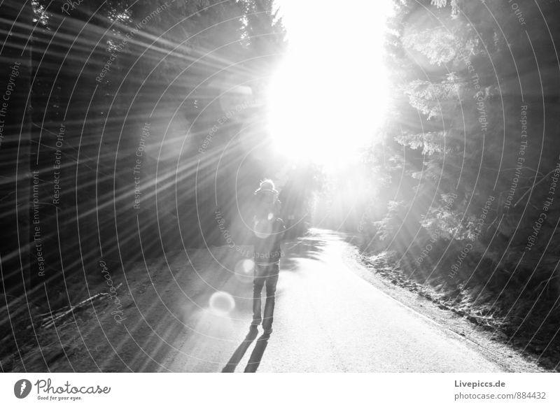 im Harz Ferien & Urlaub & Reisen Ausflug Berge u. Gebirge wandern Mensch maskulin feminin Kind Mann Erwachsene 2 1-3 Jahre Kleinkind 30-45 Jahre Umwelt Natur