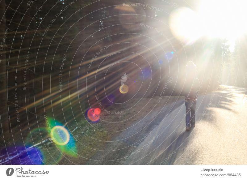 im Harz Ferien & Urlaub & Reisen Berge u. Gebirge wandern maskulin Kind 2 Mensch Umwelt Natur Landschaft Pflanze Sonnenlicht Herbst Baum Wald gehen leuchten