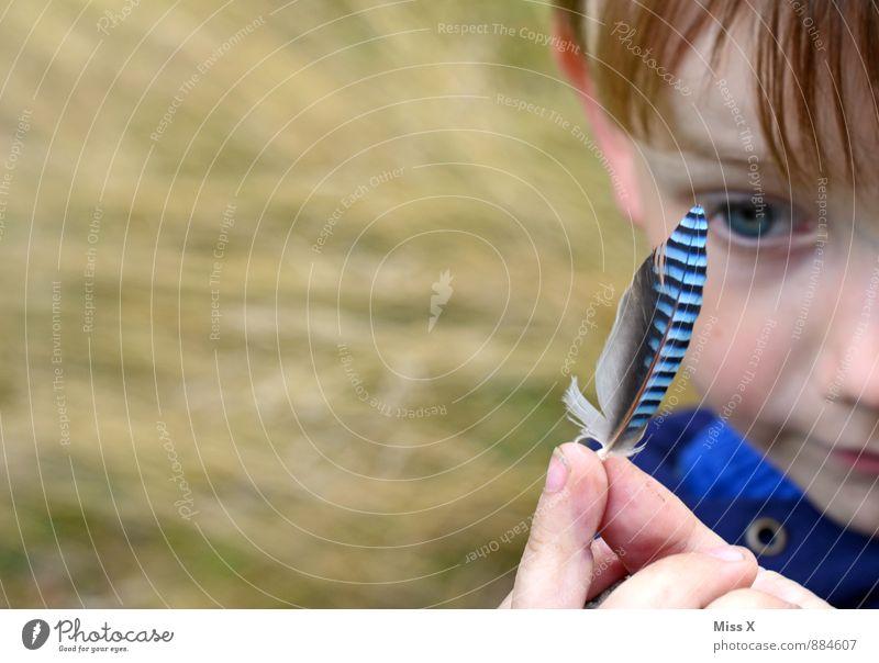 Fundstück Mensch Kind blau Tier Wald Gesicht Spielen Vogel Freizeit & Hobby Kindheit Feder Ausflug Finger einzigartig Neugier entdecken